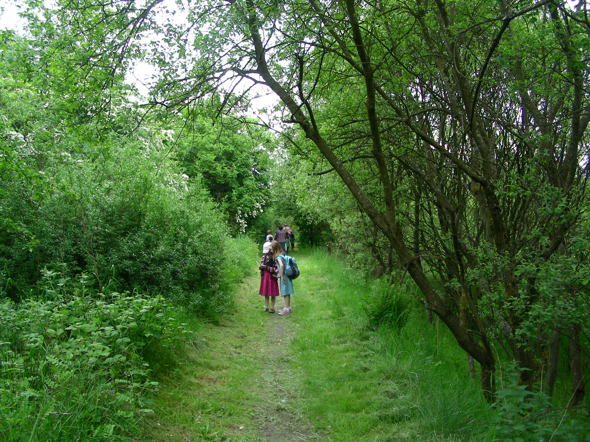 Lambhill Stables Nature Walk | Glasgow Home Ed